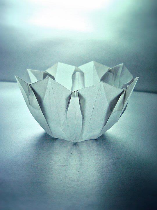 Origami Aquario