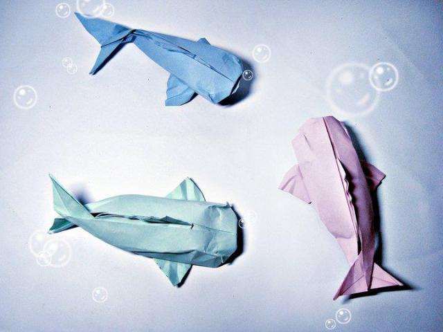 Peixes Origami
